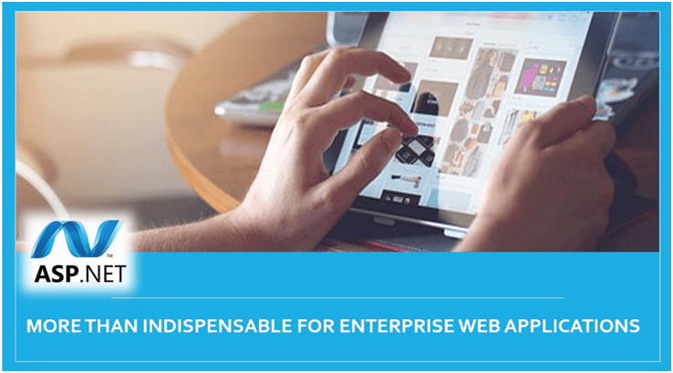 ASP .NET More than Indispensable for Enterprise Web Applications