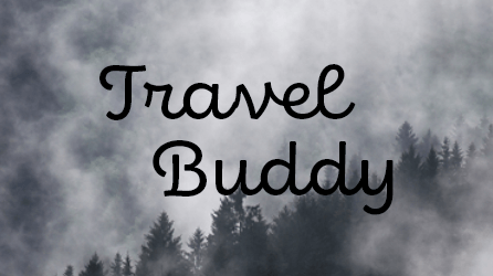 Travel Buddy – Responsive Travel Website Development