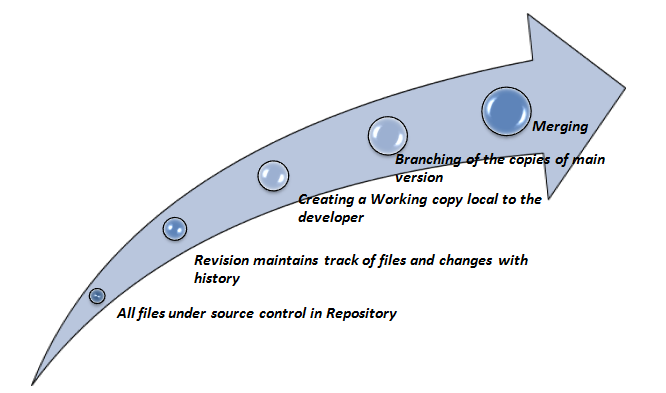 Source Control Management Tools – A Must