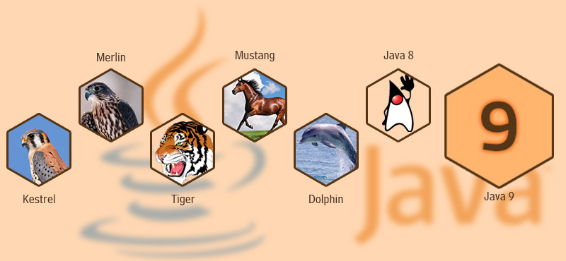A Glimpse At What Java 9 Proposes